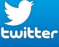 标志为一只蓝色的小鸟 推特(Twitter) 让网络品牌营销成流行趋势