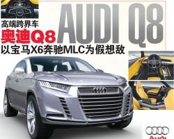 高端跨界车 奥迪Q8 Audi Q8 以宝马X6奔驰MLC为假想敌