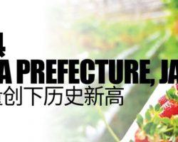 日本福岛县(Fukushima Prefecture,Japan) 农产品出口量创下历史新高