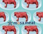 """""""人造肉""""初创公司  Mosa获880万美元新融资"""