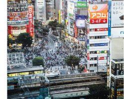 """日本(Japan)电商市场属""""蓝海""""  亚马逊(Amazon)  鼓励中国(China)卖家进军开拓"""