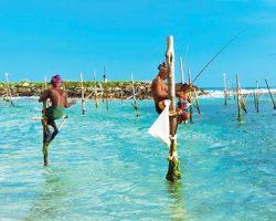 获选最佳旅行国家  斯里兰卡(Sri Lanka)  为游客带来多元化体验
