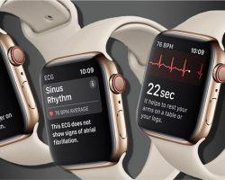 2019年会推出更多新服务  苹果(Apple)著重医疗保健领域