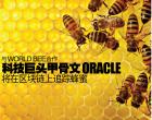 与和World Bee合作 科技巨头甲骨文(Oracle)  将在区块链上追踪蜂蜜